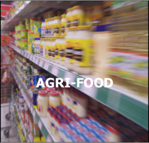 agri-food anti-static ionizing